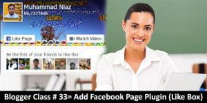 Facebook Like Box Cover