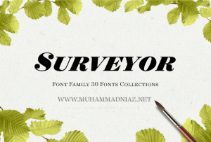 Surveyor Font Preview Cover