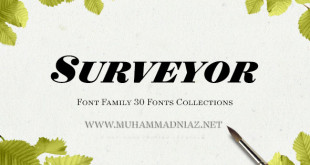 Surveyor Font Preview Cover